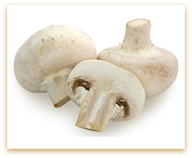 double mushroom gravy